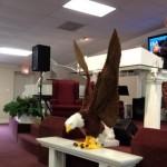 I'm an Eagle